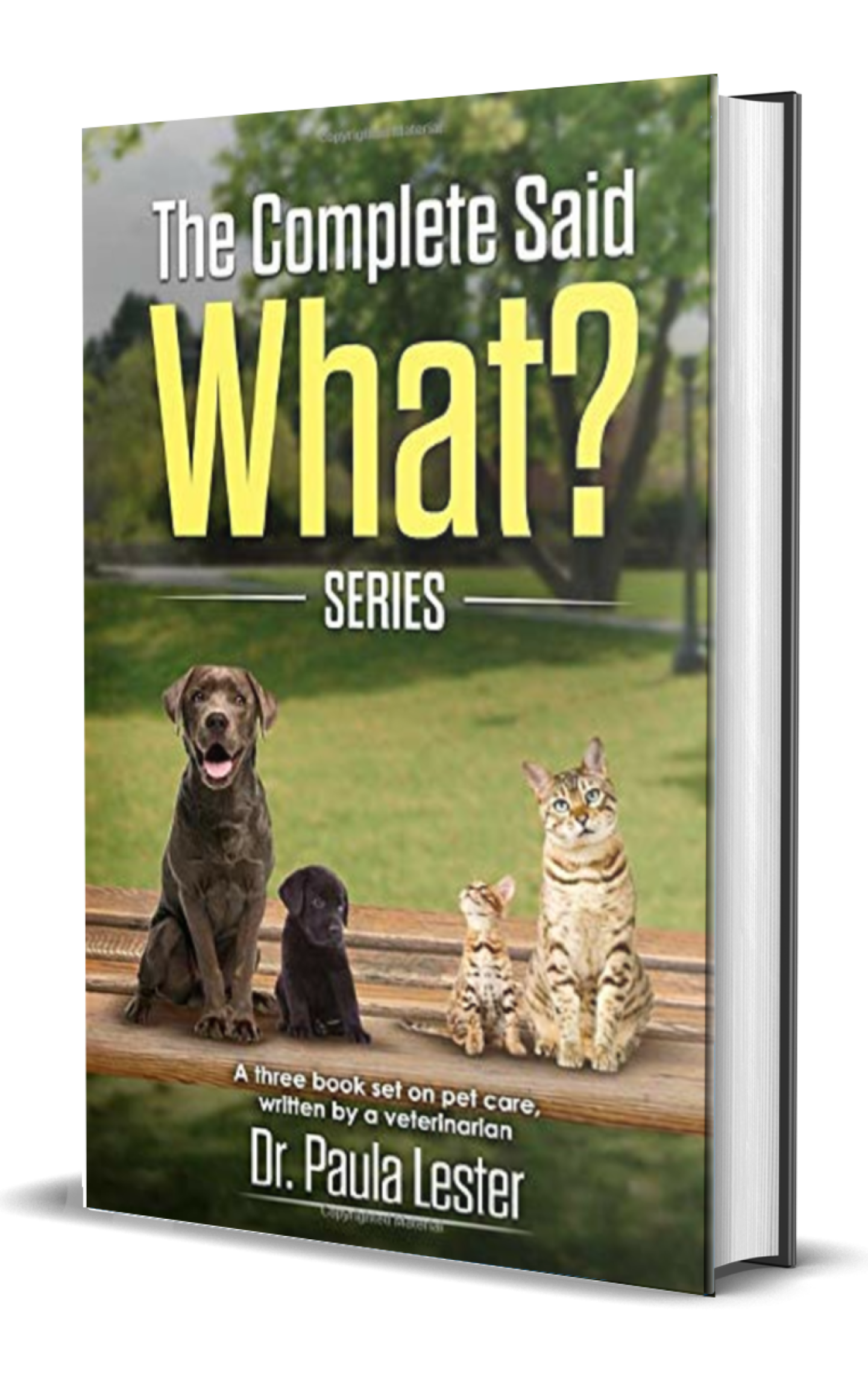 The Complete Said What? Series